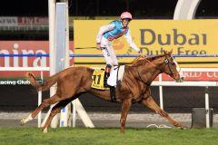 Cityscape und James Doyle - die Sieger im Dubai Duty Free. www.galoppfoto.de