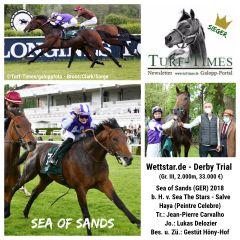 Ehre, wem Ehre gebührt: Die Collage für einen Gruppesieger gibt's natürlich auch für Sea of Sands. ©Turf-Times/galoppfoto