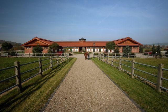 Das Gestüt Höny-Hof im hessischen Oberaula. 2000 zogen die ersten Pferde ein, zum Gestüt gehören 38 Hektar Koppeln und 800 Hektar Wald. www.galoppfoto.de