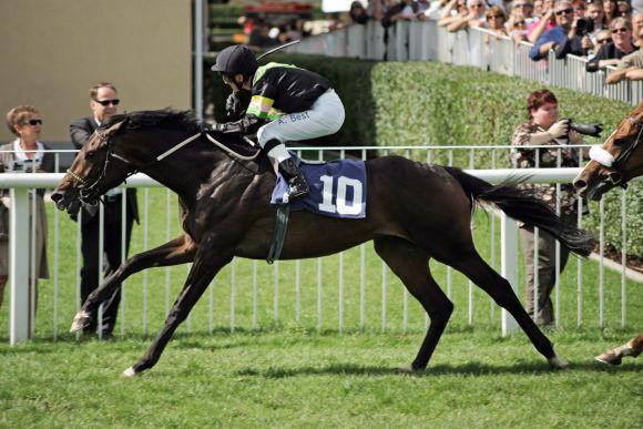 Mit Rosello geland Andre Best 2011 der bis dato vorletzte Listensieg. www.galopppfoto.de - Sarah Bauer