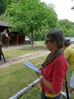 Bessere Sicht geht nicht: Testerin Annette begutachtet die Pferde beim Satteln. Foto: Karina Strübbe