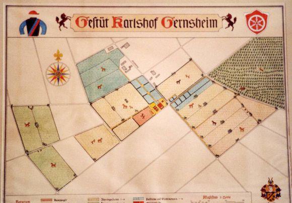 Eine handgemalte Karte von Gestüt Karlshof. Foto: Carola Kammerinke