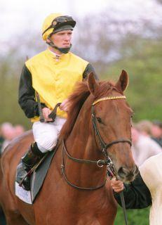 Gestüt Fährhofs Sabiango ist eines der Lieblingspferde .... www.galoppfoto.de