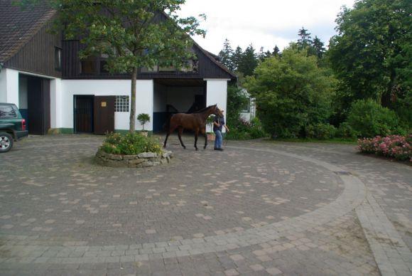 Das Wohnhaus und der Eingangsbereich im Gestüt Wittekindshof. www.dequia.de